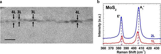 Studies of two-dimensional h-BN and MoS 2 for potential