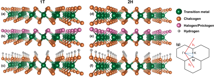 Predicting two-dimensional topological phases in Janus materials by su