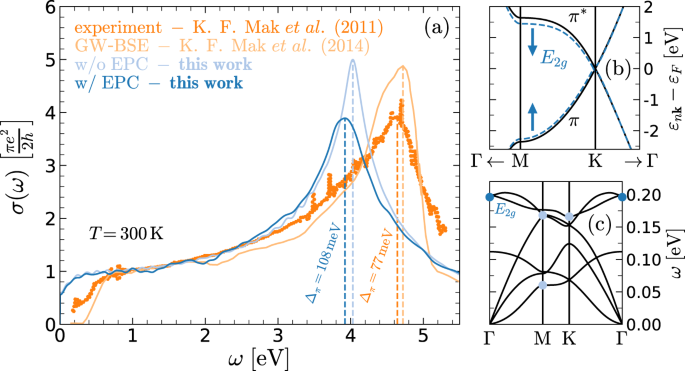 Phonon-assisted processes in the ultraviolet-transient optical respons