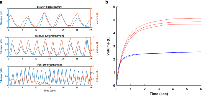 Respiration rate and volume measurements using wearable strain