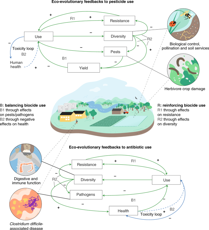 Antibiotic and pesticide susceptibility and the Anthropocene