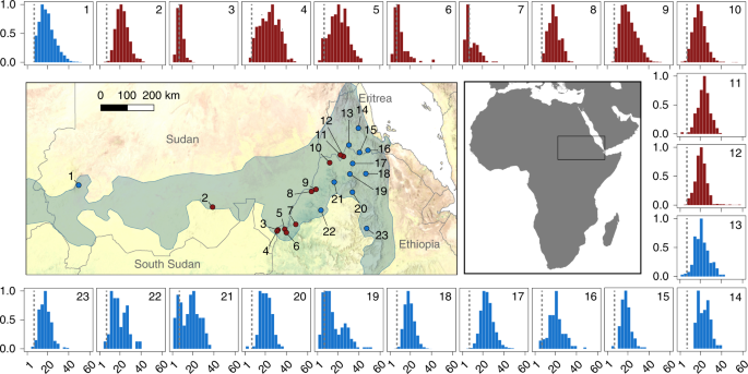 Frankincense in peril | Nature Sustainability