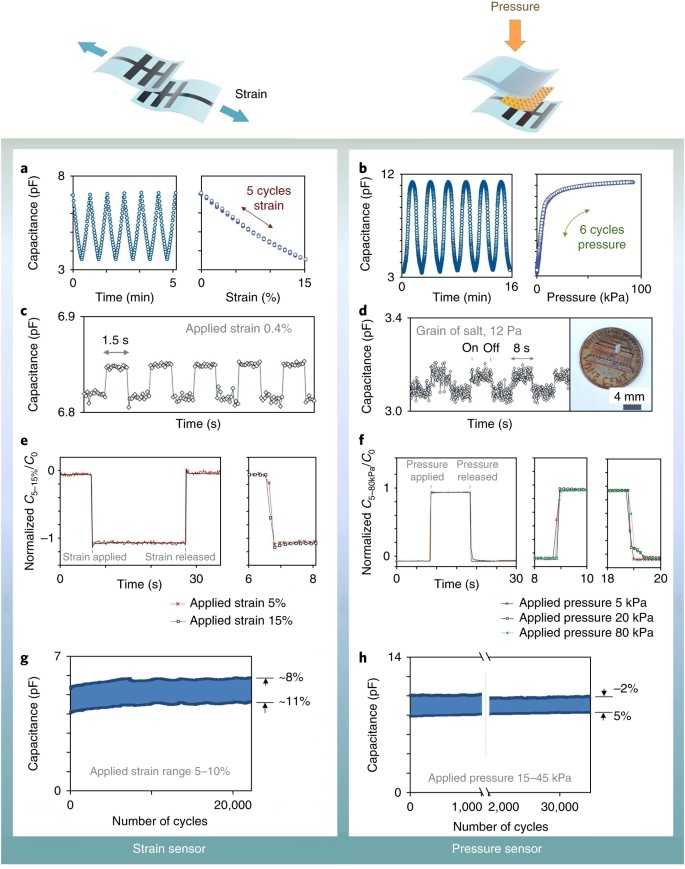 A stretchable and biodegradable strain and pressure sensor