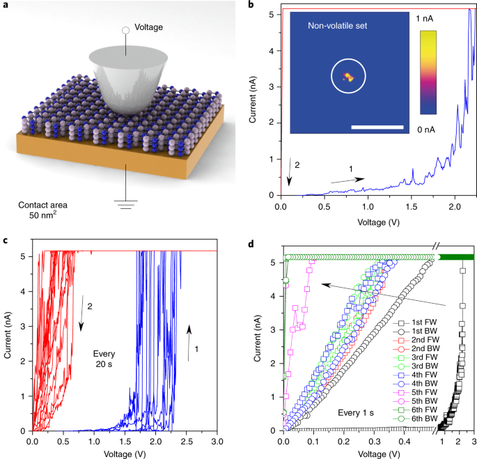 Electronic synapses made of layered two-dimensional
