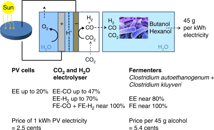 Technical photosynthesis involving CO 2 electrolysis and