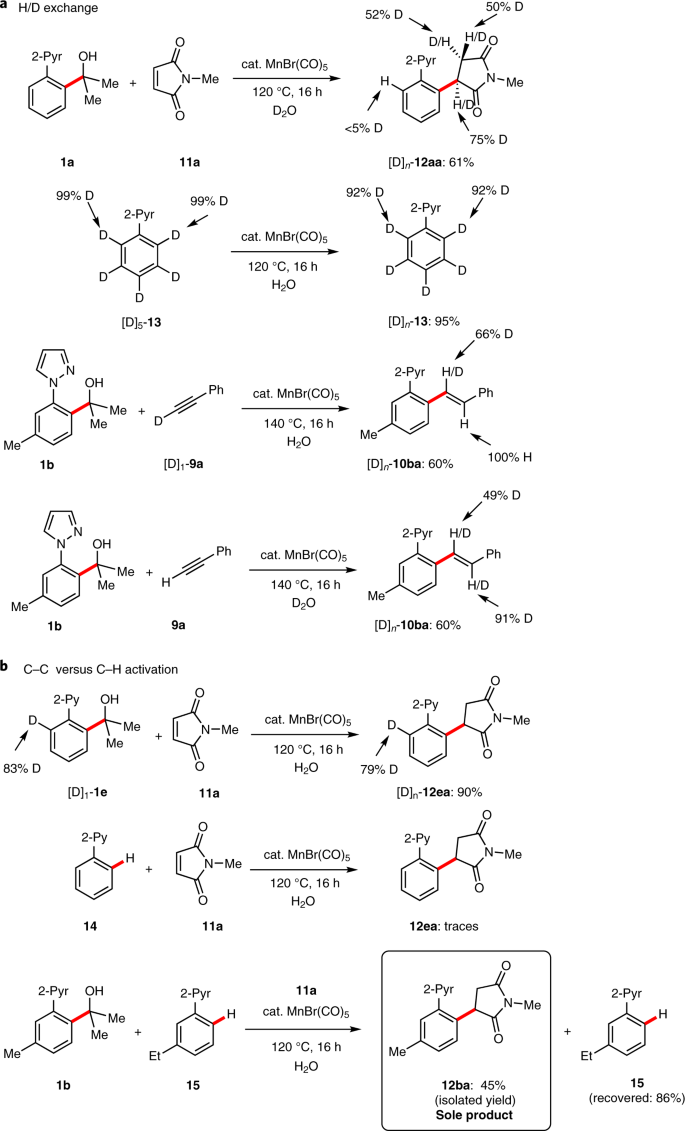 Versatile and robust C–C activation by chelation-assisted manganese