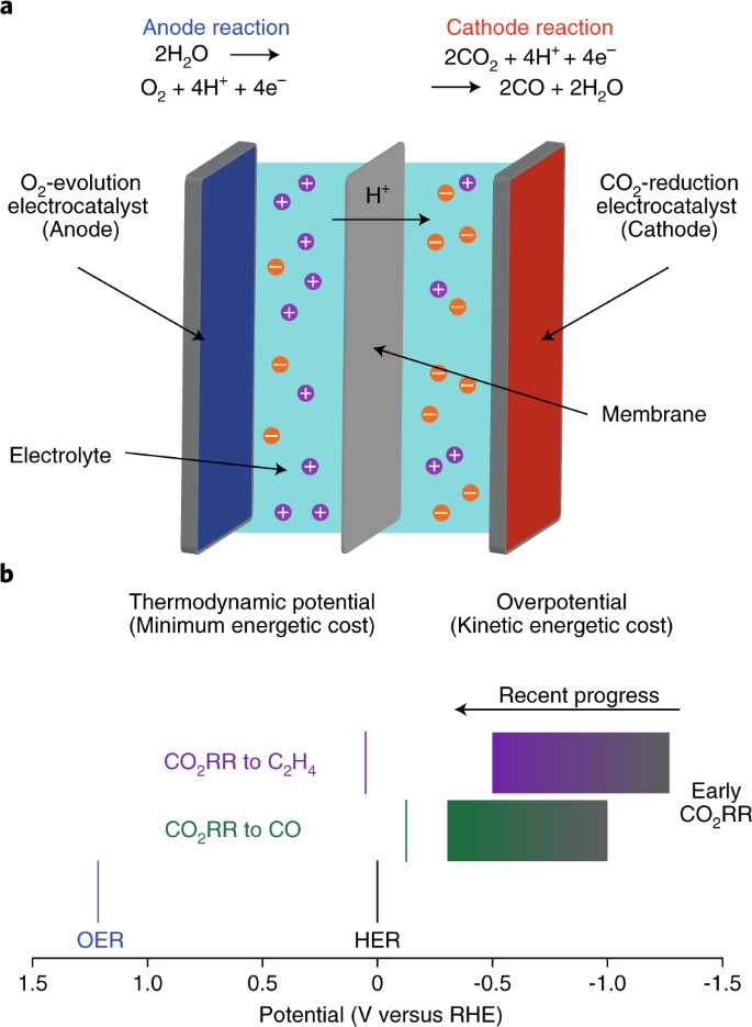 Designing materials for electrochemical carbon dioxide
