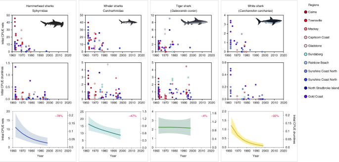 Decline of coastal apex shark populations over the past half