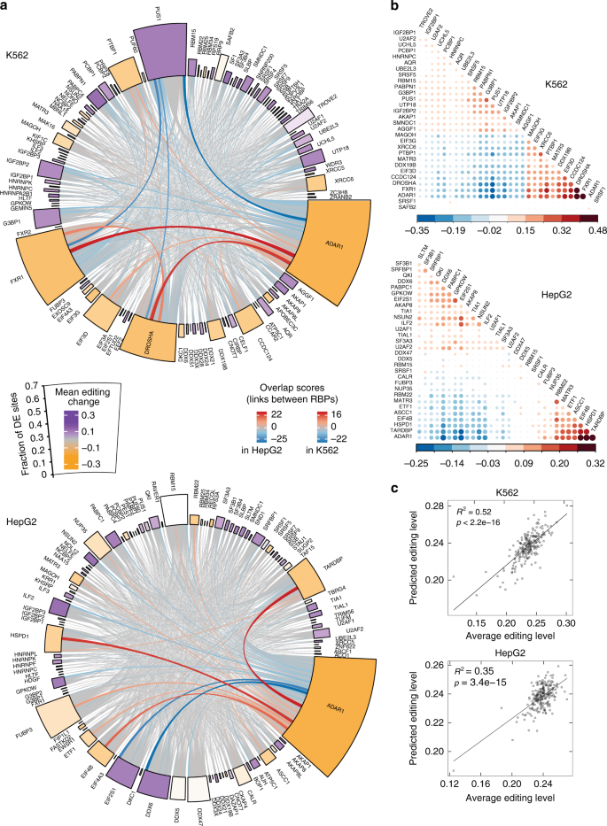 Regulation of RNA editing by RNA-binding proteins in human cells