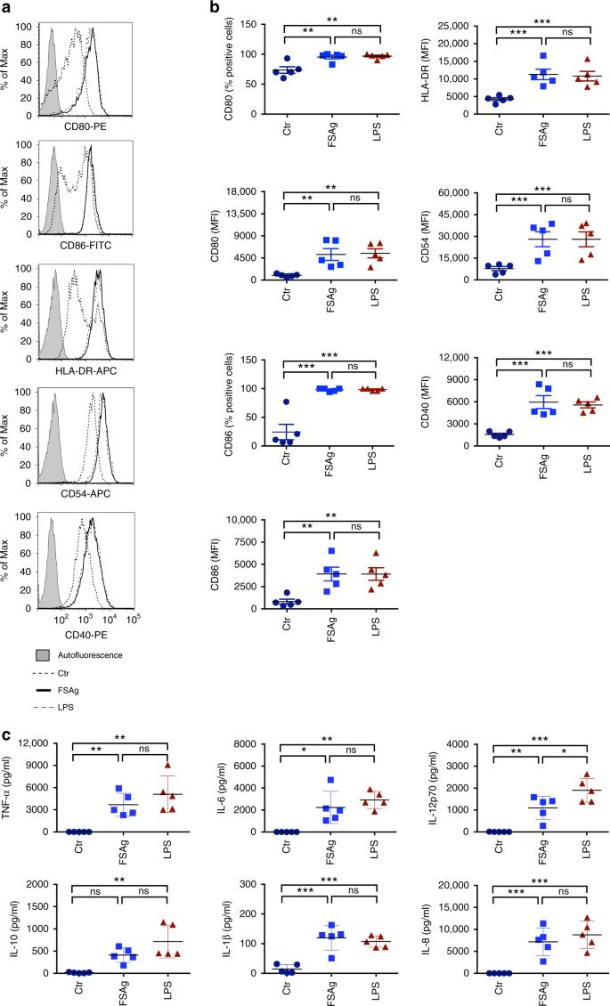 Wuchereria bancrofti filaria activates human dendritic cells and