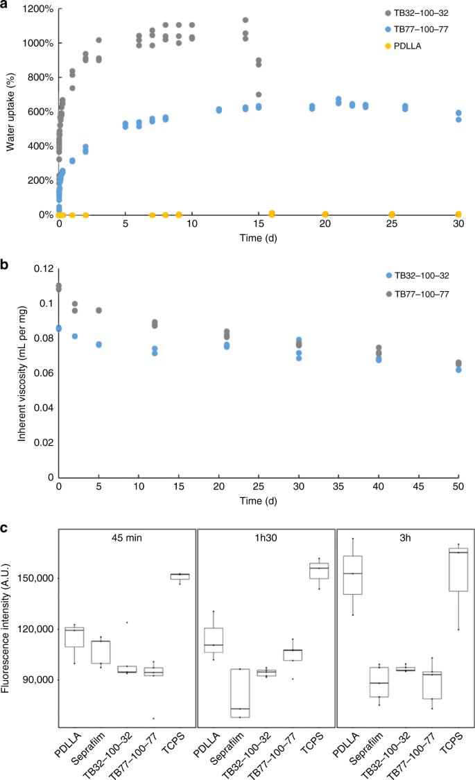 endometrium rák gpc 2021