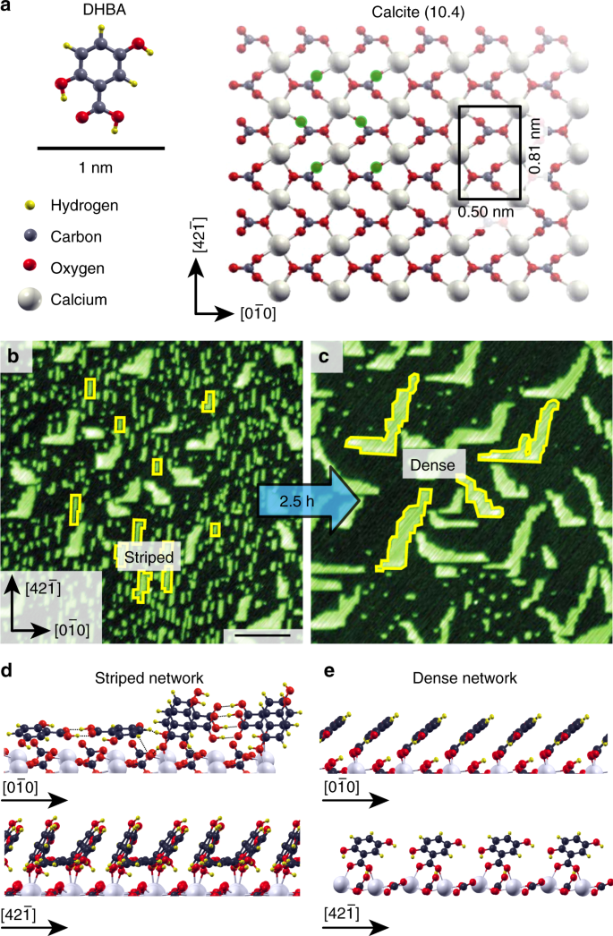 check out 482c8 30a0b Kinetic control of molecular assembly on surfaces   Communications ...