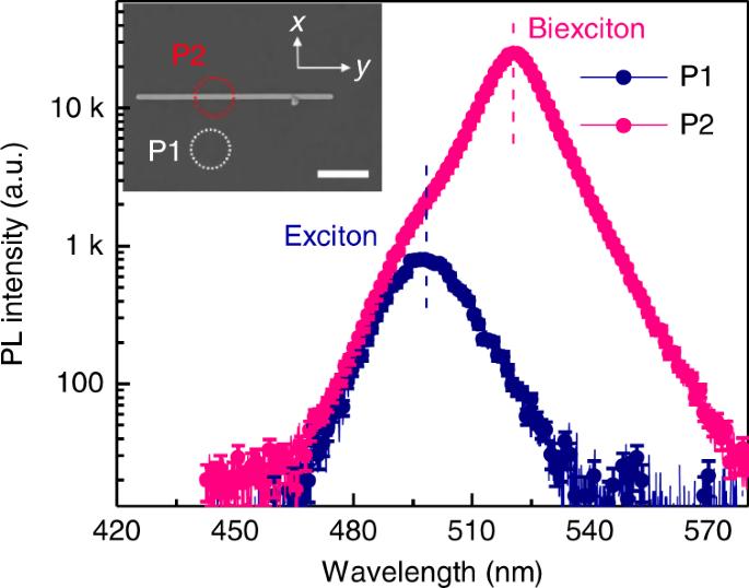 Room temperature continuous-wave excited biexciton emission in