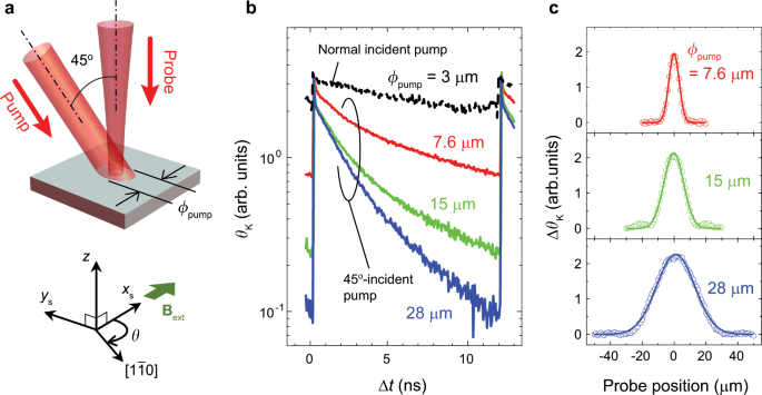 Spin accumulation in photo-induced potential dimples generated in semi