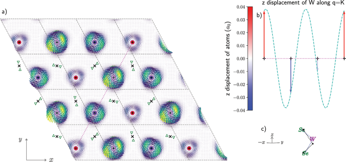 Magnetic oscillations induced by phonons in non-magnetic materials