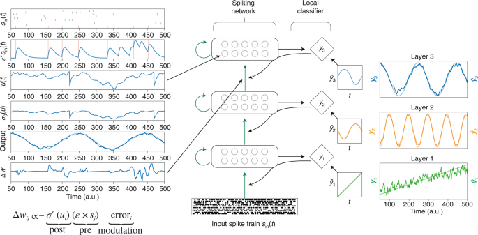 Reinforcement learning in artificial and biological systems | Nature