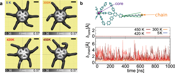 Giant thermal expansion of a two-dimensional supramolecular network triggered by alkyl chain motion
