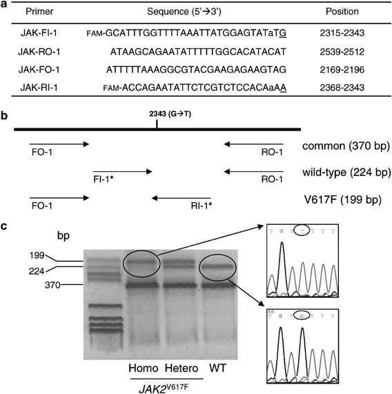 A Quantitative Assay For Jak2 V617f Mutation In Myeloproliferative Disorders By Arms Pcr And Capillary Electrophoresis Leukemia