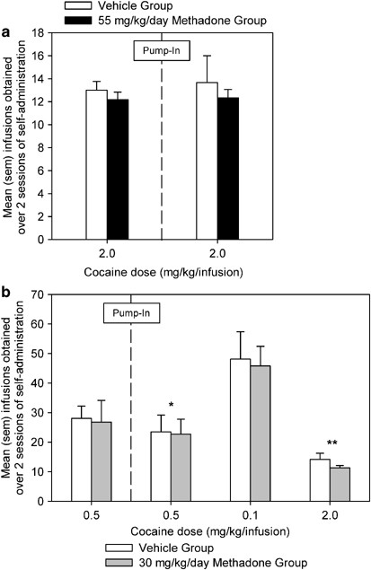 Effects of High-Dose Methadone Maintenance on Cocaine Place