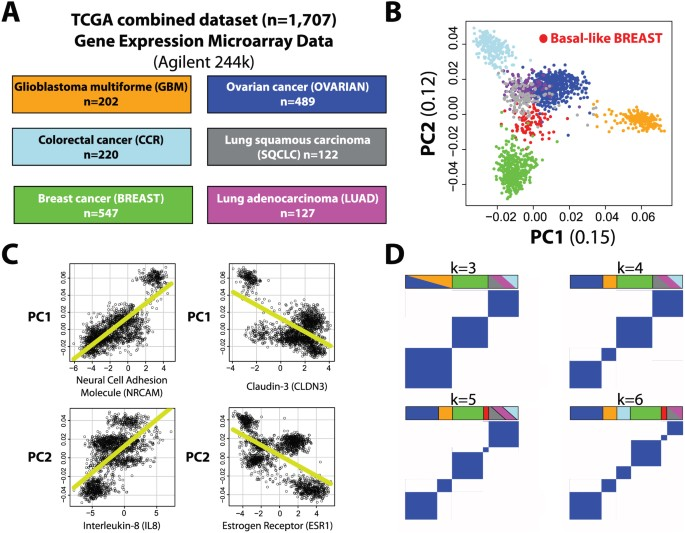 Genomic Analyses Across Six Cancer Types Identify Basal Like Breast Cancer As A Unique Molecular Entity Scientific Reports
