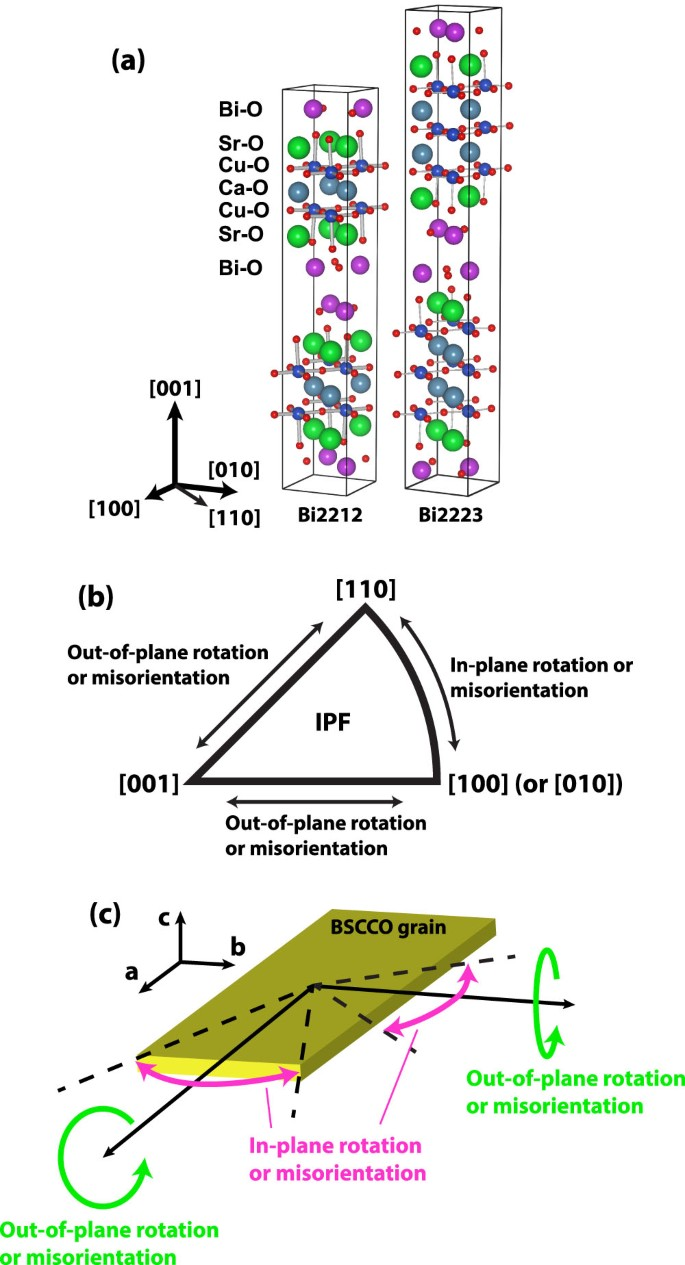 Comparison Of Growth Texture In Round Bi2212 And Flat Bi2223 Wires And Its  Relation To High Critical Current Density Development | Scientific Reports