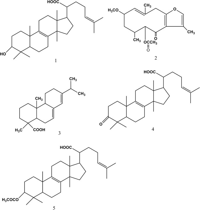 Frankincense And Myrrh Suppress Inflammation Via Regulation Of The Metabolic Profiling And The Mapk Signaling Pathway Scientific Reports