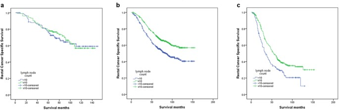 Effect Of Lymph Node Count On Pathological Stage Iii Rectal Cancer With Preoperative Radiotherapy Scientific Reports