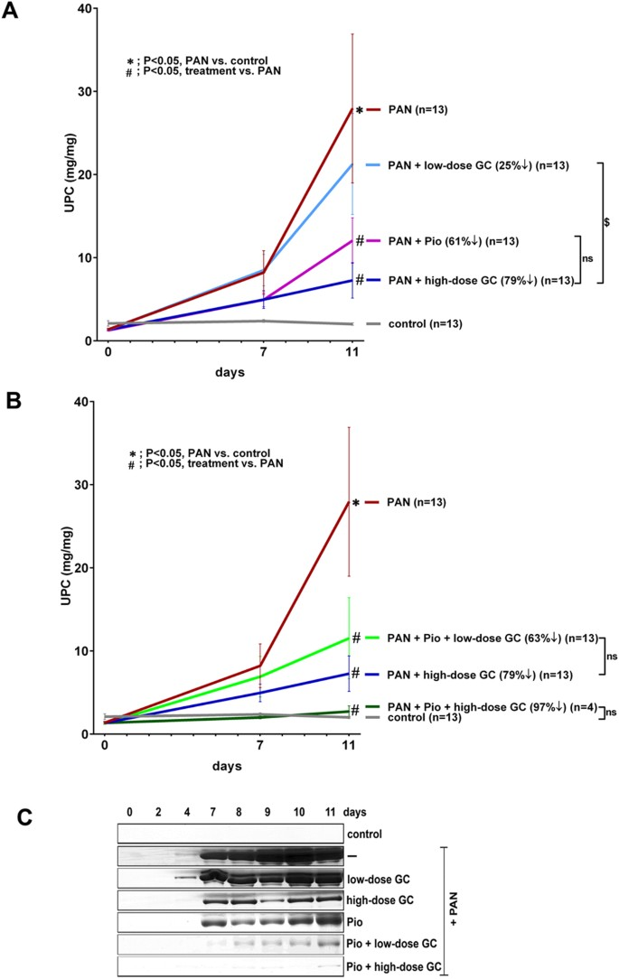 Pioglitazone Enhances The Beneficial Effects Of Glucocorticoids In Experimental Nephrotic Syndrome Scientific Reports