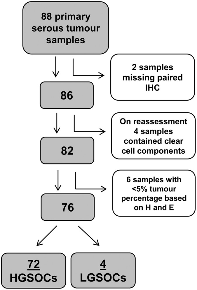 Assessing Mutant P53 In Primary High Grade Serous Ovarian Cancer Using Immunohistochemistry And Massively Parallel Sequencing Scientific Reports
