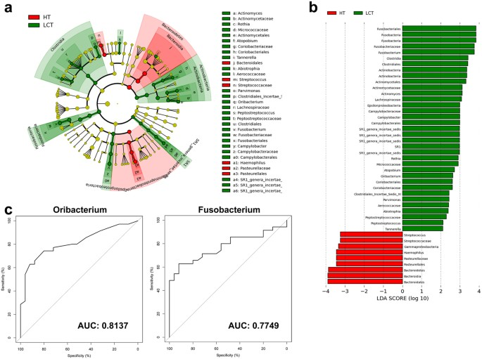 Deep Sequencing Reveals Microbiota Dysbiosis Of Tongue Coat In Patients With Liver Carcinoma Scientific Reports