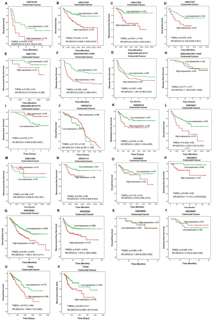 Thbs2 Is A Potential Prognostic Biomarker In Colorectal Cancer Scientific Reports
