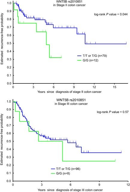 Association Of Common Gene Variants In The Wnt B Catenin Pathway With Colon Cancer Recurrence The Pharmacogenomics Journal