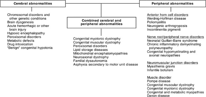Diagnostic challenges for Pompe disease: An under-recognized