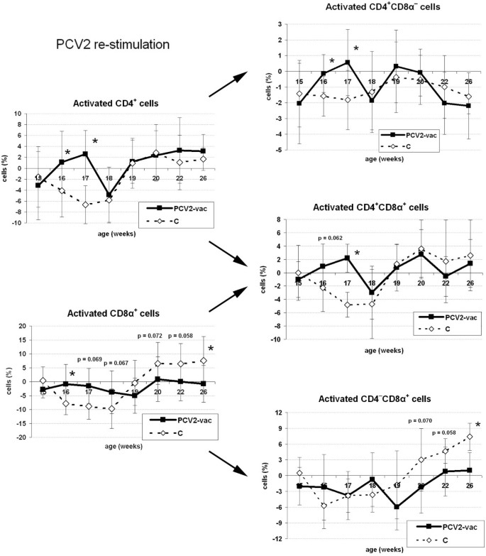 Memory T cell proliferative responses and IFN-γ productivity sustain