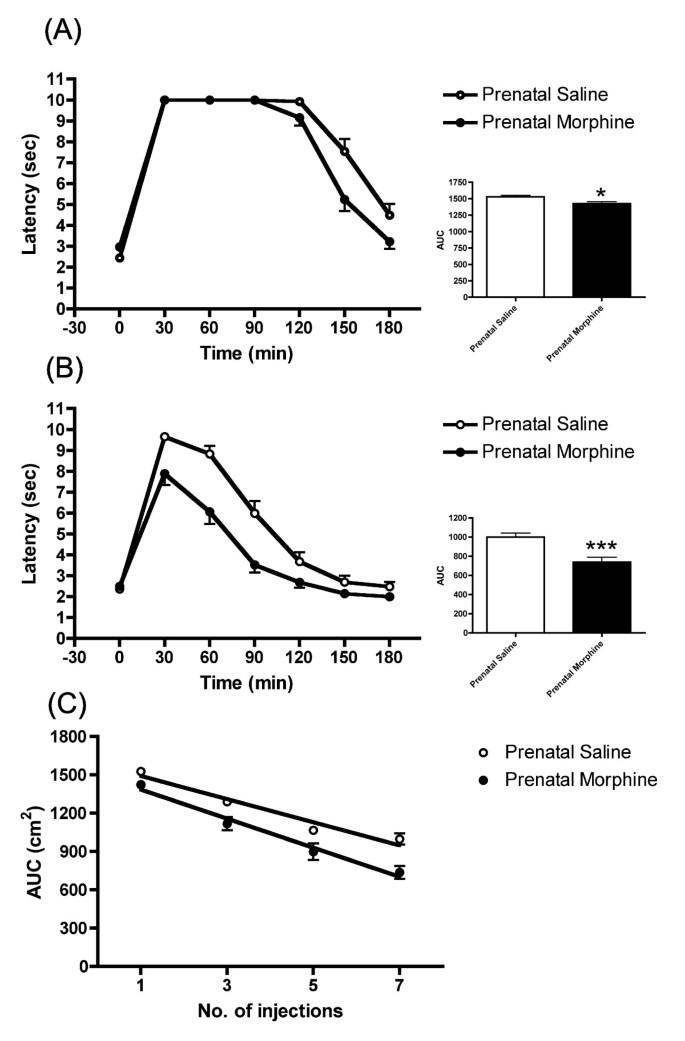 Enhancement of tolerance development to morphine in rats