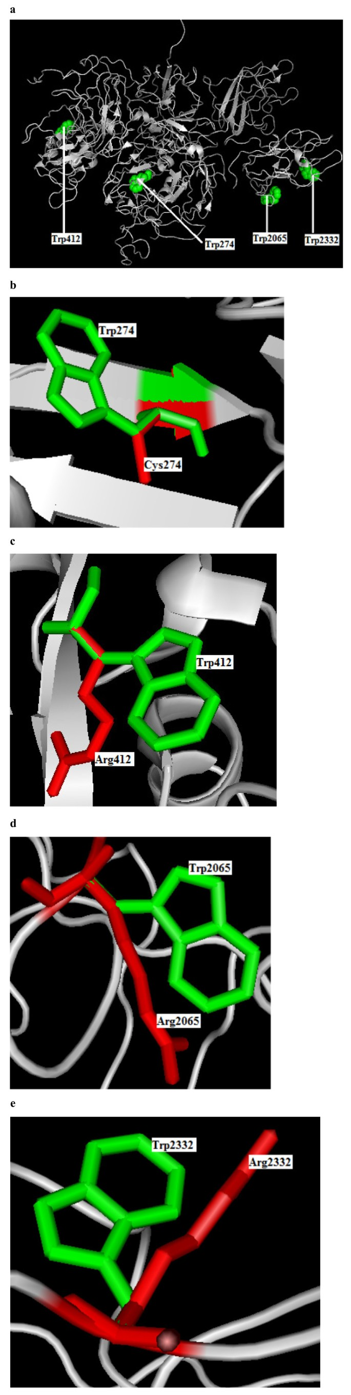 In Silico profiling of deleterious amino acid substitutions