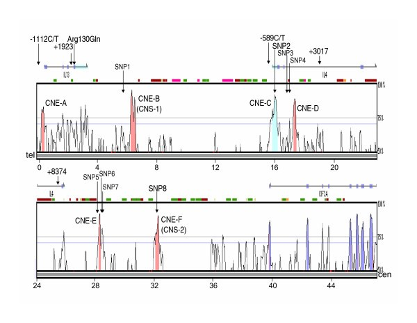 Variation in conserved non-coding sequences on chromosome 5q and ...