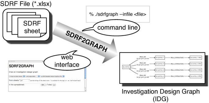 SDRF2GRAPH – a visualization tool of a spreadsheet-based description