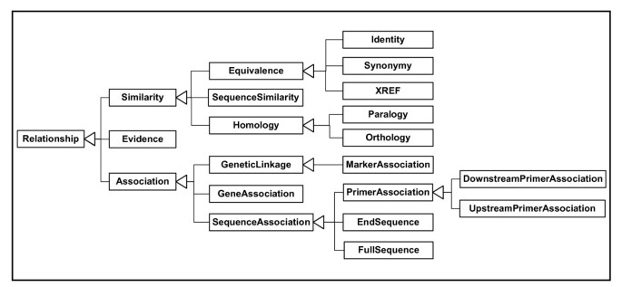 An XML transfer schema for exchange of genomic and genetic mapping