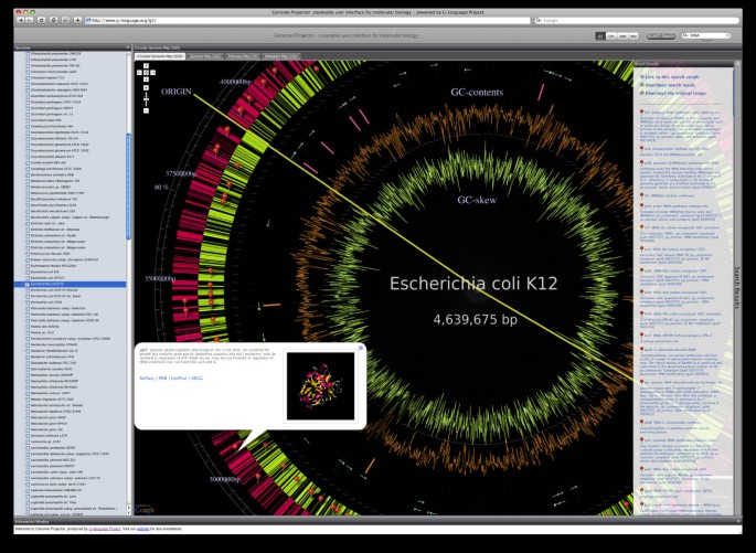Genome Projector: zoomable genome map with multiple views | BMC