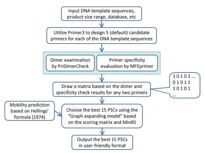 Mpprimer A Program For Reliable Multiplex Pcr Primer Design Bmc Bioinformatics Full Text