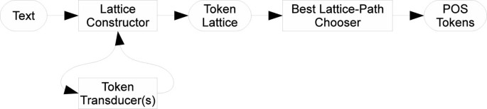 Building a biomedical tokenizer using the token lattice