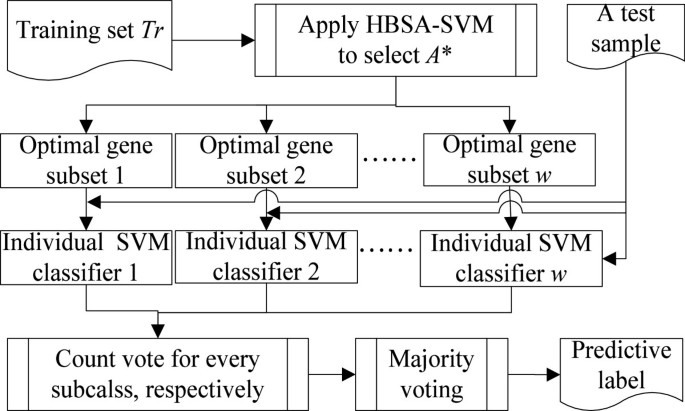 Finding minimum gene subsets with heuristic breadth-first