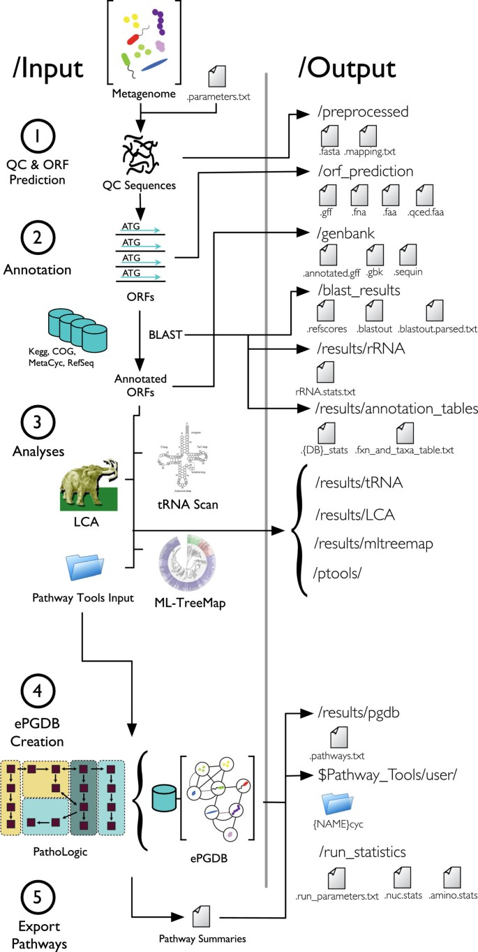 MetaPathways: a modular pipeline for constructing pathway