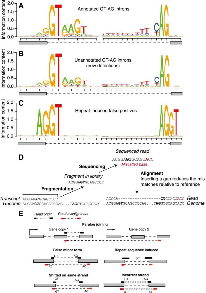 Design of RNA splicing analysis null models for post hoc filtering