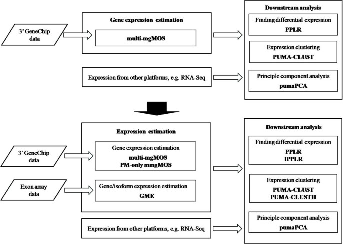 puma 3 0: improved uncertainty propagation methods for gene and