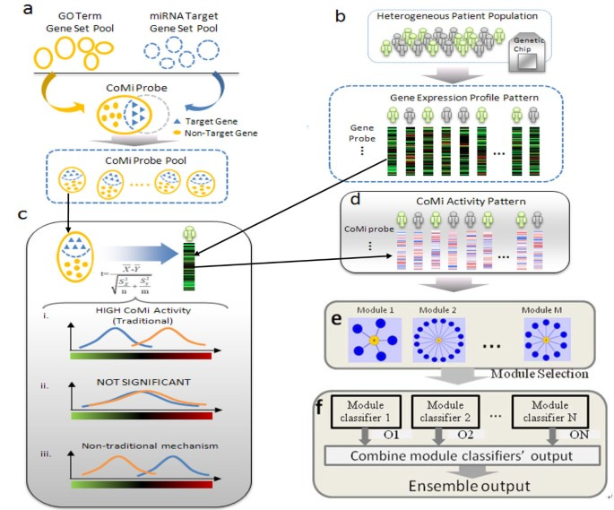 Ensemble classifier based on context specific miRNA