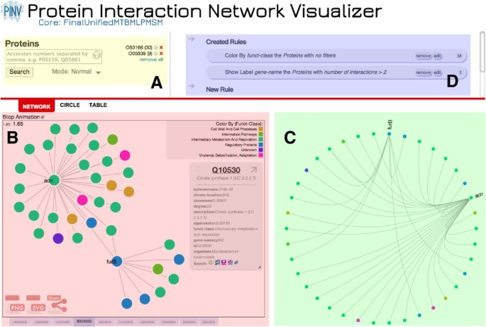 A web-based protein interaction network visualizer | BMC