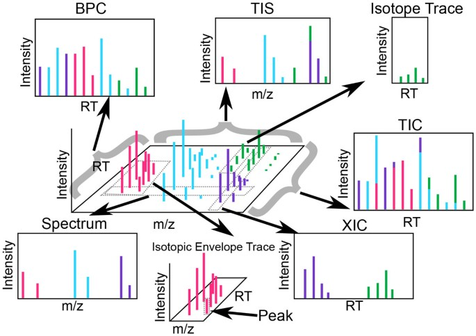 Proteomics, lipidomics, metabolomics: a mass spectrometry tutorial