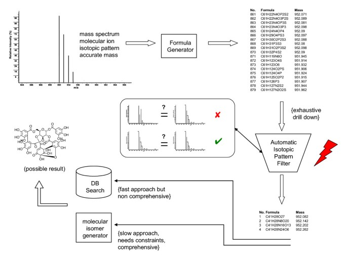 Metabolomic database annotations via query of elemental